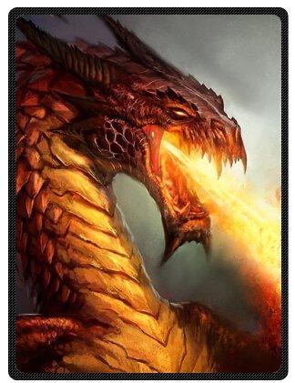 ferocity Dragon Super Soft Plush Queen Size Blanket 58