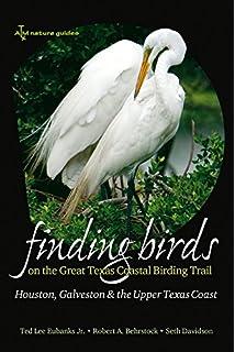 Finding Birds On The Great Texas Coastal Birding Trail Houston Galveston And