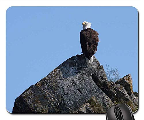 (Mouse Pad - Bald Eagle Perched Rocks Bird Raptor Looking Wild)