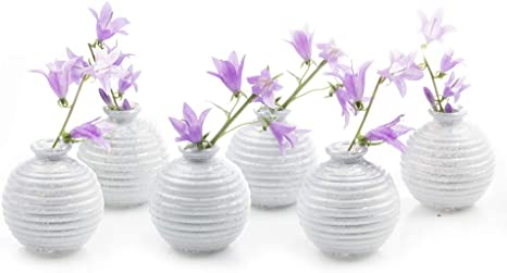 Amazon Com Chive Set Of 6 Smasak 2 5 Wide 2 75 Tall Small White Round Glass Flower Vase Centerpieces And Events Single Flower Bud Vase Bulk Home Kitchen