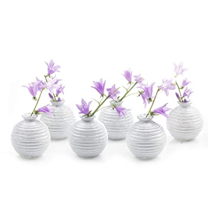 Chive Set Of 6 Smasak 2 5 Wide 2 75 Tall Small White Round Glass Flower Vase Centerpieces And Events Single Flower Bud Vase Bulk