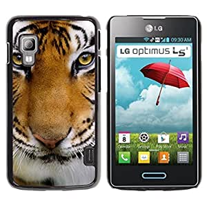 Print Motif Coque de protection Case Cover // V00002170 tigres de la cara // LG Optimus L5 II Dual E455 / E460