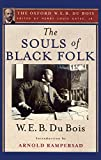 W. E. B. Du Bois was a public intellectual, sociologist, and activist on behalf of the African American community. He profoundly shaped black political culture in the United States through his founding role in the NAACP, as well as internationally th...