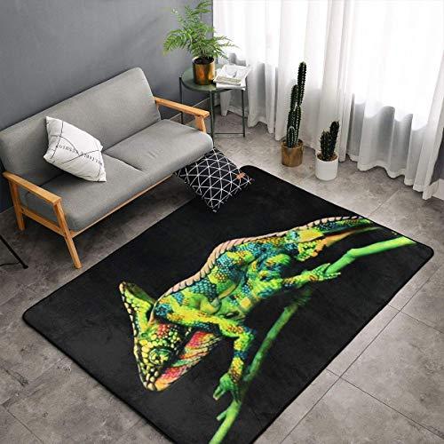 - Jingclor Cute Green Lizard Pattern Area Rugs, Bedroom Living Room Kitchen Mat, Non-Slip Floor Mat Doormats Nursery Rugs, Children Play Throw Rugs Carpet Yoga Mat