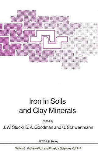 Iron in Soils and Clay Minerals (Nato Science Series C:) by J.W. Stucki (2007-03-23)