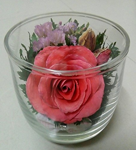 DIY Vintage Artifical Real Natural Preserved Dried Pink Rose Flowers in Glass Home and Decor Handmade Collection