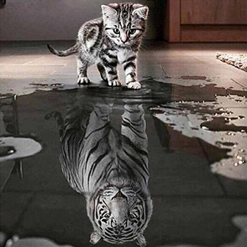 Lowprofile Cat and Tiger DIY 5D Diamond Embroidery Painting Cross Stitch Home Decor (Tiger Wall Mirror)