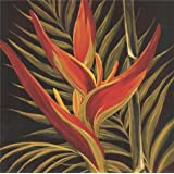 Canvas Prints Of Oil Painting ' Strelitzia ' , 16 x 16 inch / 41 x 41 cm , High Quality Polyster Canvas Is For Gifts And Home Office, Living Room And Nursery Decoration, graphs
