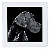 3dRose Sven Herkenrath Animal - A Cute Great Dane Dog on Black Background Trendy Side Profile - 18x18 inch quilt square (qs_280401_7)