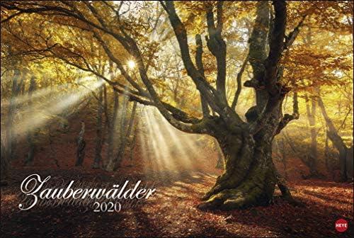 Zauberwälder - Kalender 2020 - Heye-Verlag - Wandkalender 58 cm x 39 cm