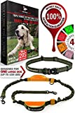 Pet Dreamland Hands Free Leash - For One/Two Medium to Large Dogs (up to 150lbs) - Running/Hiking/Dog Training - Heavy Duty Extra Long Bungee Lead - Waist Leashes for Dogs (One Large Dog, Khaki & Orange)