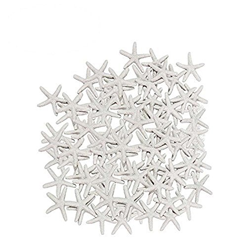 Anyumocz 40 Pcs Starfish White Resin Pencil Finger Sea Star for Wedding Party Christmas, Home and Craft -