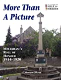 More Than a Picture, Martyn Gibson, 0956408303