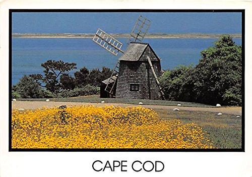 Windmill and Flowers Cape Cod Massachusetts Postcard (Flowers Windmill)