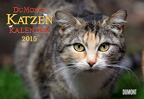 DuMonts Katzen-Kalender 2015: mit kurzweiligen Katzengeschichten