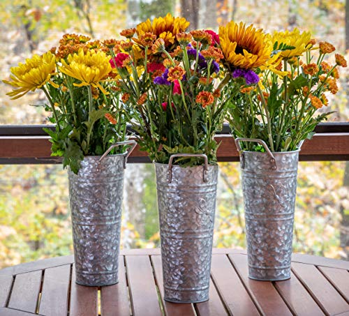 WH Galvanized Metal Farmhouse Flower Vases 9 Inch, Set of 3 - Rustic Decorative French Flower Bucket Pots for Wedding Table Centerpiece Decorations, Home Decor by Walford Home - STUNNINGLY PRACTICAL - Our galvanized vases are an excellent choice for any home decor. Enhance your family room, fireplace mantle or living room. Perfect for crafting artificial flower arrangements or to use as a table centerpieces for dining room table. PERFECT FOR ALL SEASONS - Highlight your home decorations for living room or spotlight your mantle decoration with our premium set of 3 galvanized bucket set. Each metal flower vase is 9 inches tall. RUSTIC FARMHOUSE DECOR - The Walford Home farmhouse decor is perfect for creating magnificent artificial flower arrangements. Create stunning table centerpiece for dining room table. - vases, kitchen-dining-room-decor, kitchen-dining-room - 51mRVEO1zUL -