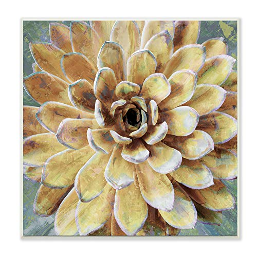 (The Stupell Home Décor Collection Yellow Botanical Succulent Bloom Painting Wall Plaque Art, Multi-Color)