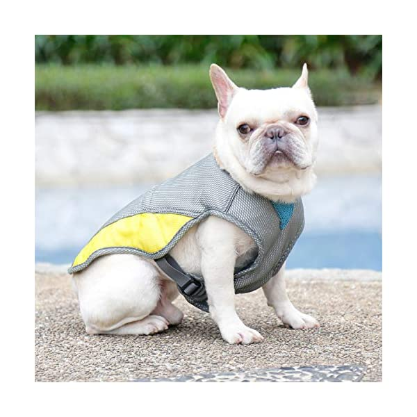 """Rantow Dog Cooling Vest Harness Outdoor Puppy Cooler Jacket Reflective Safety Sun-proof Pet Hunting Coat, Best for Small Medium Large Dogs (XS(Chest 14.17""""-17.33"""")) 4"""