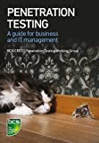 img - for Penetration Testing book / textbook / text book