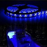 321 Lighting 12V 300 LED 16.4ft Pontoon Boat