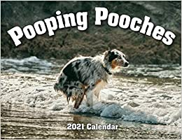 Best Yankee Swap Gifts 2021 2021 Pooping Pooches White Elephant Gag Gift Calendar: Gag Gifts
