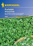 Sperli Gemüsesamen Portulak Winterportulak, grün