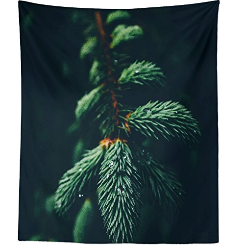 Westlake Art - Wall Hanging Tapestry - Wallpaper Christmas - Photography Home Decor Living Room - 26x36in -