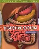 Digestive System, Gretchen Hoffmann, 076143058X