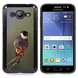 - baby bird spring nature blurry branch - - Modelo de la piel protectora de la cubierta del caso FOR Samsung Galaxy J2 RetroCandy