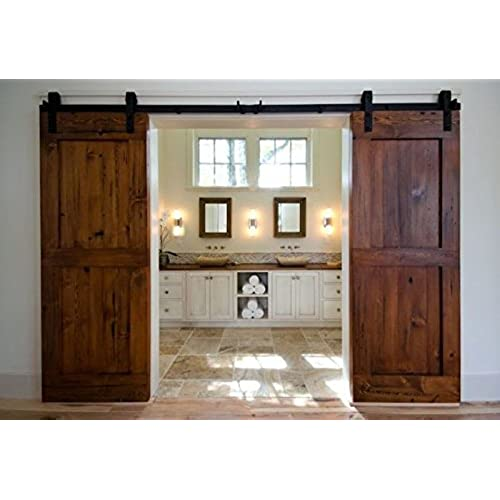 Double Barn Doors  sc 1 st  Amazon.com & Double Barn Doors: Amazon.com