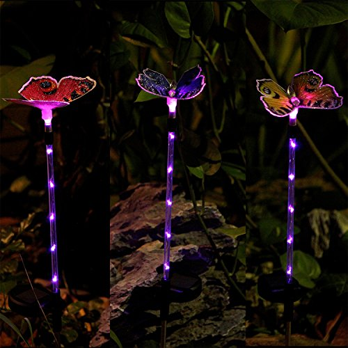Outdoor Led Butterfly Lights in Florida - 6