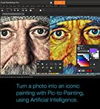 Paintshop Pro 2019 Ultimate - Photo Editing and Graphic Design Suite for PC [Amazon Exclusive]