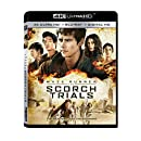 Maze Runner: The Scorch Trials (4K Ultra HD + Blu-ray + Digital HD)