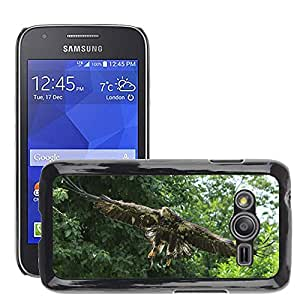 Etui Housse Coque de Protection Cover Rigide pour // M00112080 Ave Rapaz Pájaros Águila // Samsung Galaxy Ace4 / Galaxy Ace 4 LTE / SM-G313F