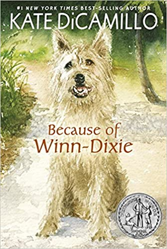 Buy Because of Winn-Dixie