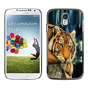Impact Case Cover with Art Pattern Designs FOR Samsung Galaxy S4 Tiger Sleepy Tired Feline Animal Africa Betty shop