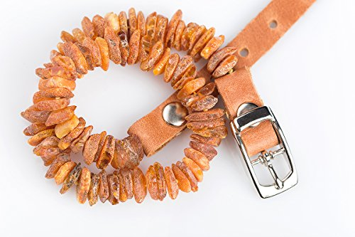 Baltic Amber Collar for Dogs and Cats. The Power from The Nature Best Natural Protection for Your Lovely Pet 100% Natural Raw Amber Collar with Adjustable Brown Leather Strap (19,5-21,5)