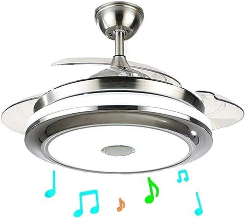 42 Inch Modern Music Ceiling Fan Light