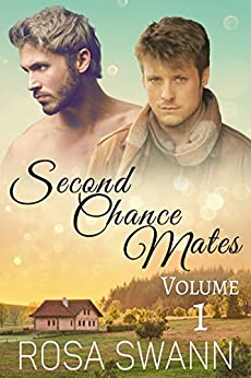 Second Chance Mates Volume 1 by [Swann, Rosa]