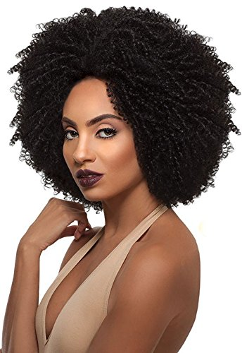 Outre Big Beautiful Hair Synthetic Lace Front Wig 4C-COILY DR425 (Best Synthetic Wigs)