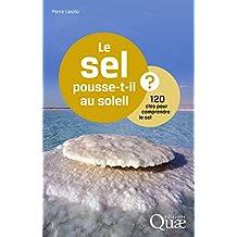 Le sel pousse-t-il au soleil ?: 120 clés pour comprendre le sel (French Edition)