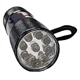 NFL Tampa Bay Buccaneers LED Flashlight