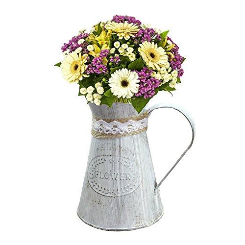 Kettle Planter - SHZONS Watering Cans, 3pcs Tinplate Watering Can Kettle Painted Garden Flower Pot Plant Planter Home Decor,Iron Pitcher Vase Primitive Jug Vase