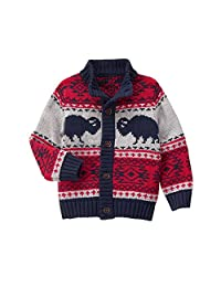 Gymboree boys Big Boys Buffalo Cardigan