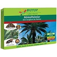 Biotop – Nematodes útiles especiales para palmeras (25