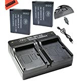 BM Premium Pack of 2 DMW-BCM13E Batteries and USB Dual Battery Charger for Panasonic Lumix DMC-FT5A, DMC-LZ40, DMC-TS5, DMC-TS6, DMC-TZ37, DMC-TZ40, DMC-TZ41, DMC-TZ55, DMC-TZ60, DMC-ZS27, DMC-ZS30, DMC-ZS35, DMC-ZS40, DMC-ZS45, DMC-ZS50 Digital Camera