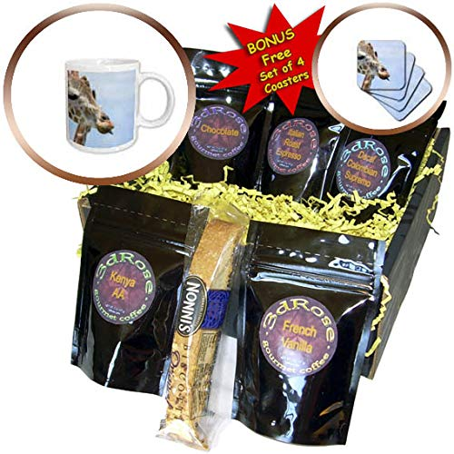 3dRose Susans Zoo Crew Animal - Giraffe head sticking out tongue - Coffee Gift Baskets - Coffee Gift Basket (cgb_294893_1)
