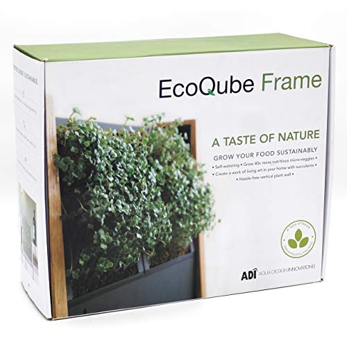 (EcoQube Frame - Easy Sprouting Kit Garden for Sprouting Seeds, Herbs, Microgreens, and Broccoli Sprouts (EcoQube Frame (with Broccoli)) )