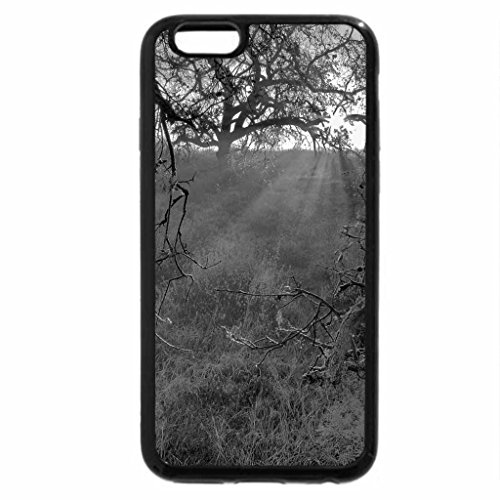 iPhone 6S Plus Case, iPhone 6 Plus Case (Black & White) - Ray lights within flowers branch