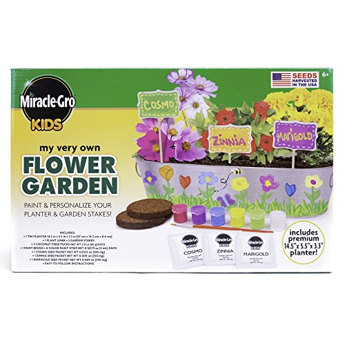 Miracle-Gro Kids My Very Own Flower Garden by Horizon Group USA (Kit Craft Garden)